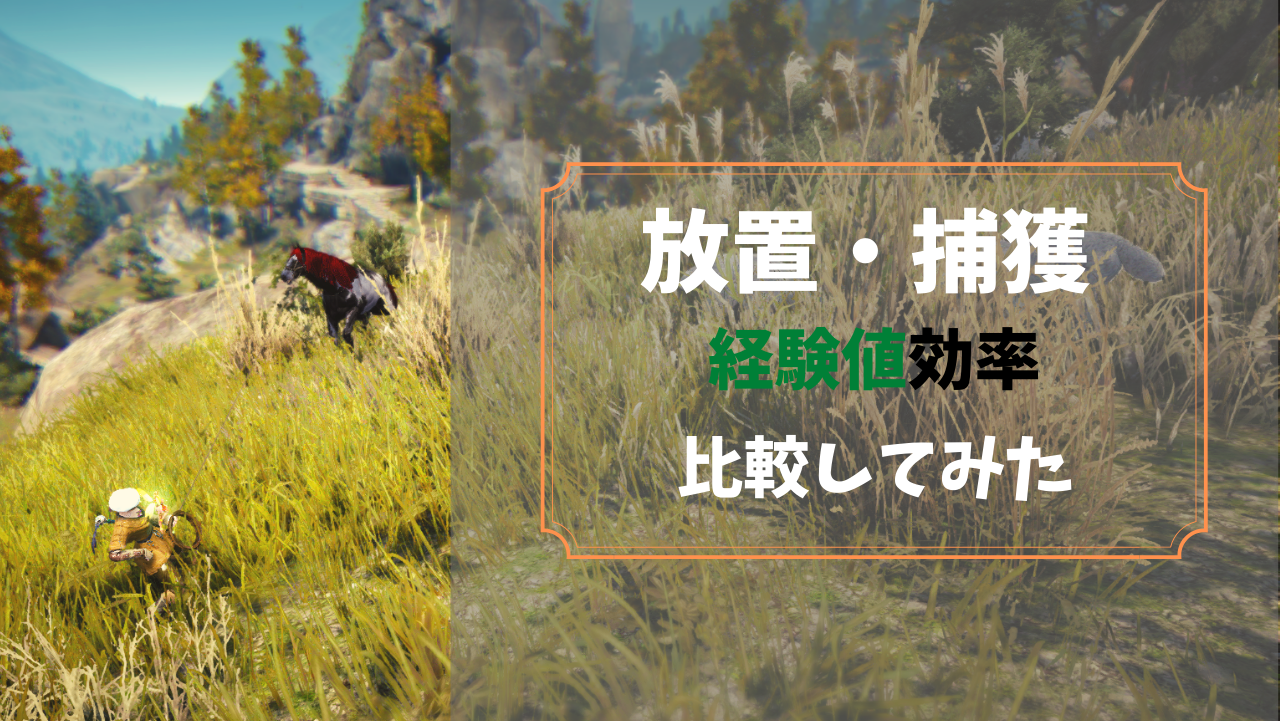 【PC版黒い砂漠】捕獲・放置で獲得できる調教経験値 比較まとめ