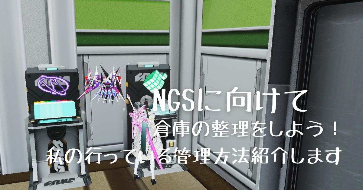【PSO2】NGSに向けて倉庫の整理をしよう!私が行っているアイテムの管理方法を紹介します